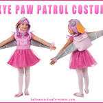 Skye Paw Patrol Costume is Simply PAW-fect