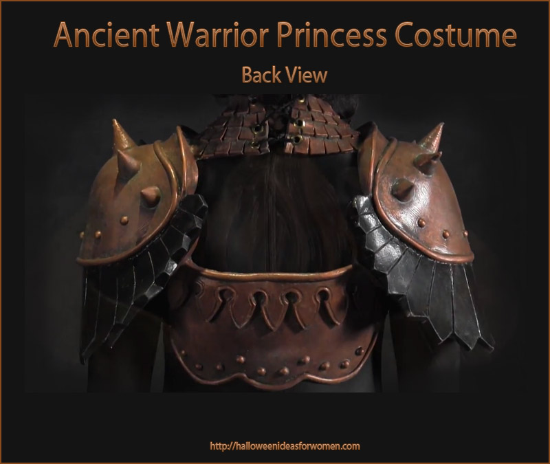 Ancient Warrior Princess Costume back
