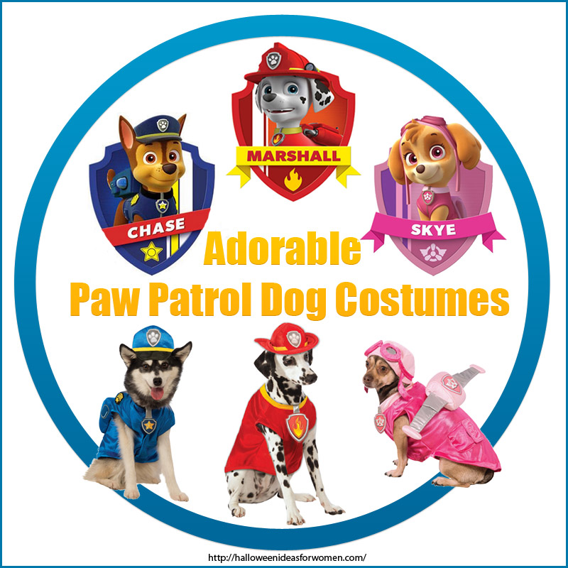Paw Patrol Costumes For Dogs
