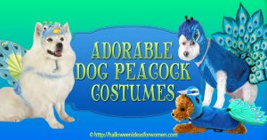 Dog Peacock Costumes
