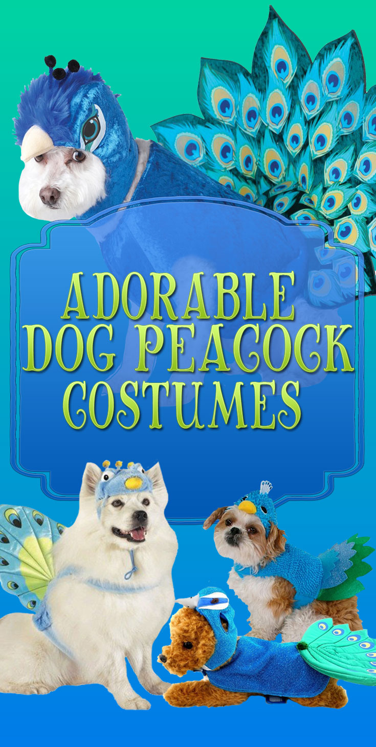 Dog Peacock Costume