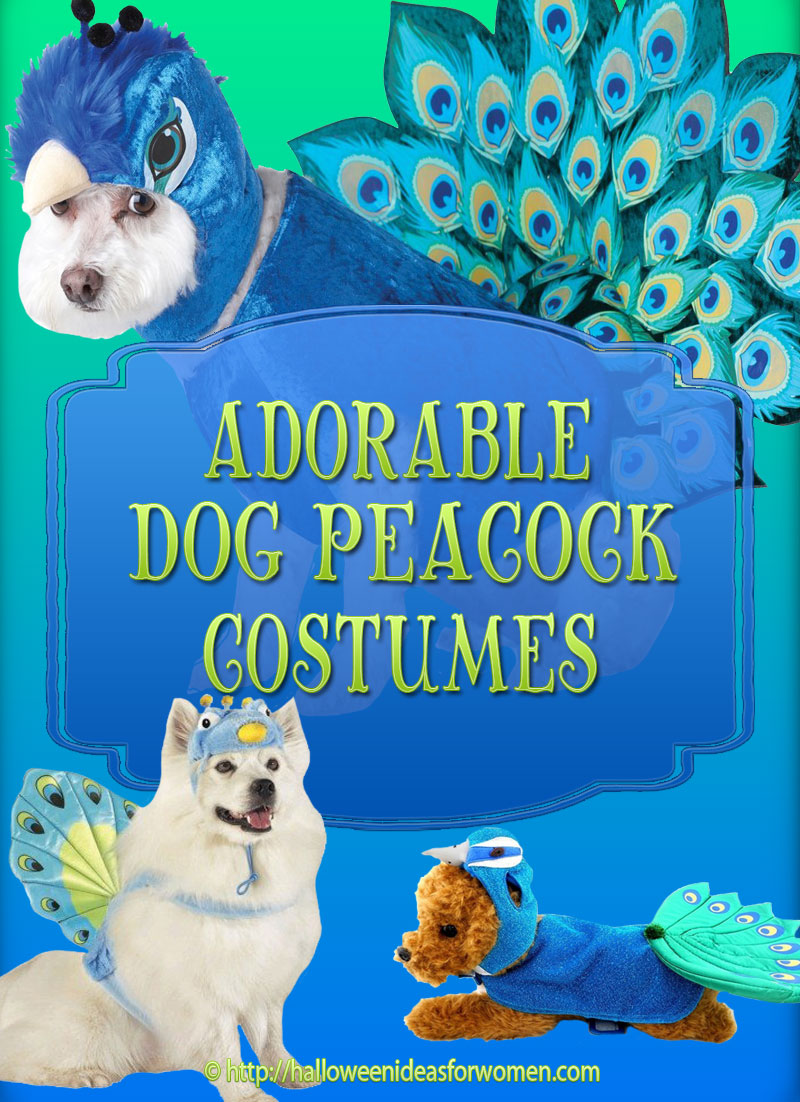 Dog Peacock Costume
